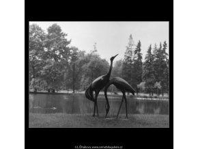 Volavky (2235-2), Praha 1963 červen, černobílý obraz, stará fotografie, prodej