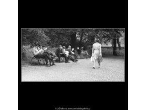 Čtenáři na lavičkách (2249), žánry - Praha 1963 červen, černobílý obraz, stará fotografie, prodej