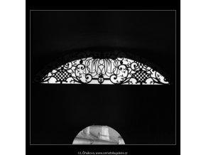Mříže (2266-1), Praha 1963 červen, černobílý obraz, stará fotografie, prodej