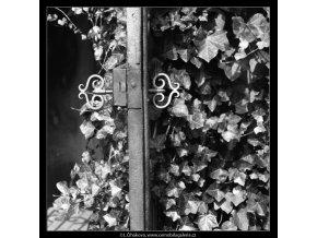 Zámek na dveřích (2394-3), Praha 1963 září, černobílý obraz, stará fotografie, prodej
