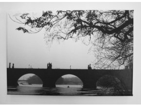 Karlův most od vody