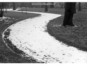 Cesta na Vyšehradě (2746), žánry - Praha 1964 březen, černobílý obraz, stará fotografie, prodej
