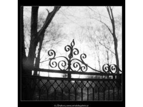 Detail ozdobné mříže (2835), Praha 1964 duben, černobílý obraz, stará fotografie, prodej
