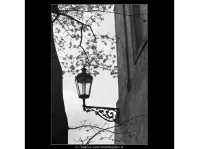 Lucerna a větve (2877-2), žánry - Praha 1964 květen, černobílý obraz, stará fotografie, prodej