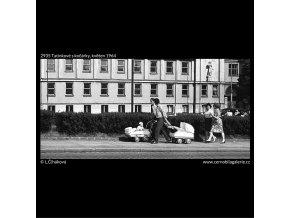 Tatínkové s kočárky (2935), žánry - Praha 1964 květen, černobílý obraz, stará fotografie, prodej