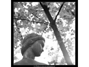 Dívka se džbánem (2951-2), Praha 1964 červen, černobílý obraz, stará fotografie, prodej