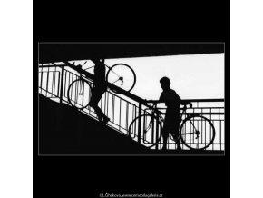 Kluci s velocipedy (2996-2), žánry - Praha 1964 červen, černobílý obraz, stará fotografie, prodej