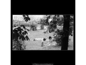 Plovárna (3065-6), Praha 1964 červenec, černobílý obraz, stará fotografie, prodej