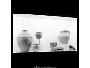 Přehlídka archeologického průzkumu (3020-1), Praha 1964 srpen, černobílý obraz, stará fotografie, prodej