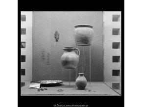 Přehlídka archeologického průzkumu (3020-2), Praha 1964 srpen, černobílý obraz, stará fotografie, prodej