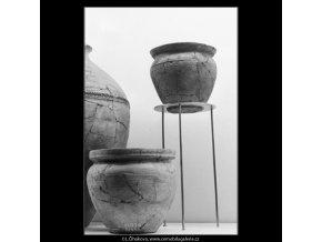 Přehlídka archeologického průzkumu (3020-4), Praha 1964 srpen, černobílý obraz, stará fotografie, prodej