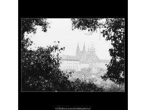 Pohled na Hrad (3116), Praha 1964 srpen, černobílý obraz, stará fotografie, prodej