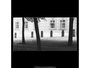Stromy a patníky (3815), žánry - Praha 1965 červenec, černobílý obraz, stará fotografie, prodej
