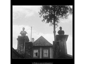 Zátiší u zámku Troja (3822), Praha 1965 červenec, černobílý obraz, stará fotografie, prodej