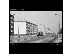 Z Petřin (3865-2), Praha 1965 srpen, černobílý obraz, stará fotografie, prodej