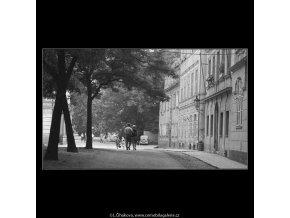 Na Kampě (3889), žánry - Praha 1965 srpen, černobílý obraz, stará fotografie, prodej