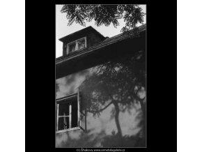 Stín stromu (3918), žánry - Praha 1965 srpen, černobílý obraz, stará fotografie, prodej