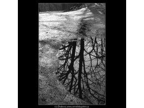 Ústup zimy (4276-1), žánry - Praha 1966 únor, černobílý obraz, stará fotografie, prodej