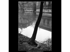 Odraz v Čertovce (4284-6), Praha 1966 únor, černobílý obraz, stará fotografie, prodej