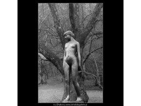 Čtrnáctiletá (4313-1), Praha 1966 únor, černobílý obraz, stará fotografie, prodej