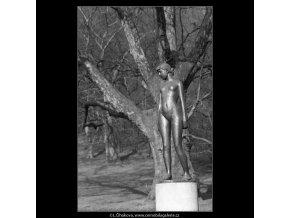 Čtrnáctiletá (4379-1), Praha 1966 březen, černobílý obraz, stará fotografie, prodej