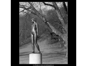 Čtrnáctiletá (4379-2), Praha 1966 březen, černobílý obraz, stará fotografie, prodej
