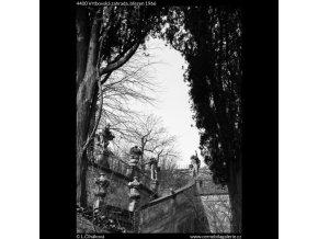 Vrtbovská zahrada (4400), žánry - Praha 1966 březen, černobílý obraz, stará fotografie, prodej