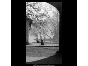 Pohled na Střelecký ostrov (4430), Praha 1966 duben, černobílý obraz, stará fotografie, prodej