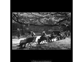 Lidé na lavičce v parku (4465-5), žánry - Praha 1966 duben, černobílý obraz, stará fotografie, prodej