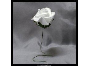 Růže pěnová I
