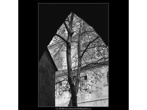 Z kláštera minoritů u sv.Jakuba (4738-2), Praha 1966 srpen, černobílý obraz, stará fotografie, prodej