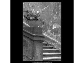 Ozdobné vázy s květinami (4829-1), Praha 1966 září, černobílý obraz, stará fotografie, prodej