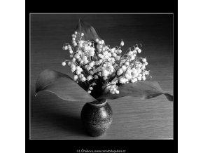 Konvalinky (4545-2), žánry - Praha 1966 květen, černobílý obraz, stará fotografie, prodej