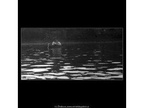 Milenci na loďce (4588), žánry - Praha 1966 červen, černobílý obraz, stará fotografie, prodej