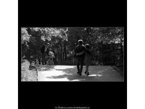 Ve Stromovce (4720-1), žánry - Praha 1966 srpen, černobílý obraz, stará fotografie, prodej