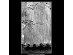 Listí a zídka (4962), žánry - Praha 1966 prosinec, černobílý obraz, stará fotografie, prodej