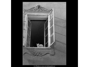 Kočka v okně (4968), žánry - Praha 1966 prosinec, černobílý obraz, stará fotografie, prodej