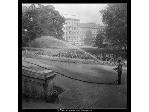 Péče o pražské parky (256), žánry - Praha 1959 září, černobílý obraz, stará fotografie, prodej