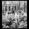 Ze židovského hřbitova (608-11), Praha 1960 květen, černobílý obraz, stará fotografie, prodej