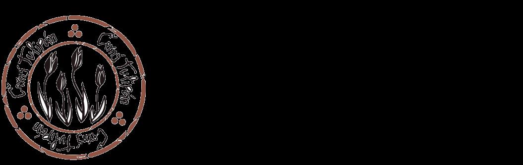 ČERNÝ TULIPÁN