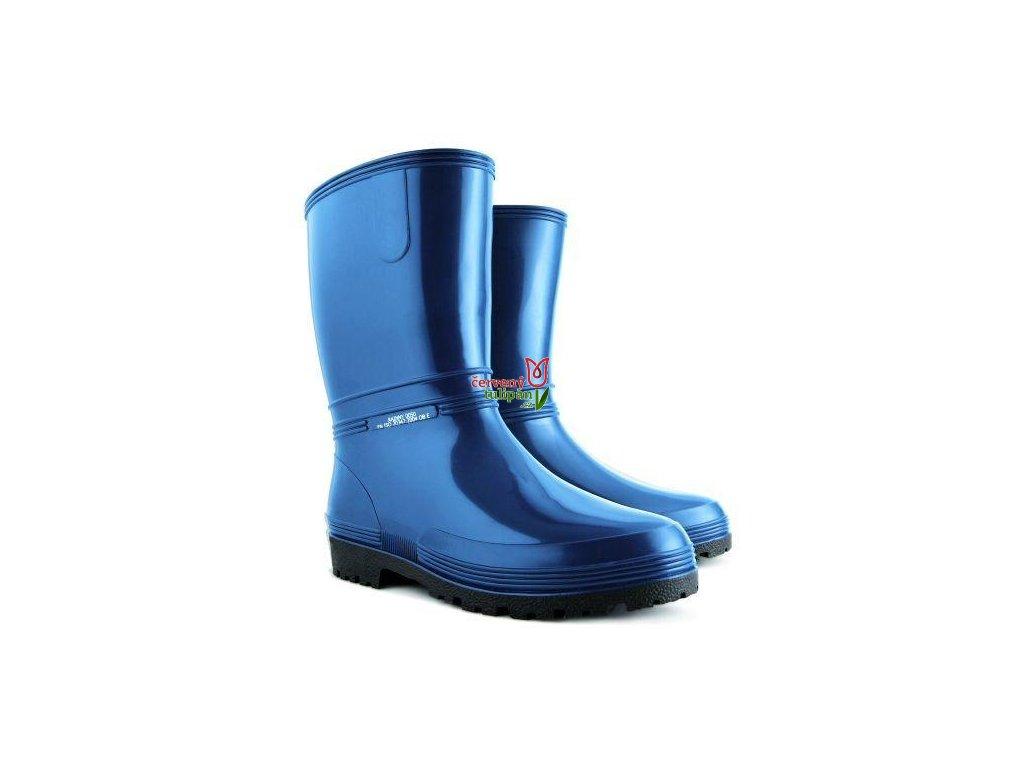 Rainny modre