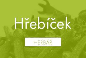 Bio herbář: Hřebíček