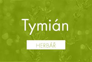Bio herbář: Tymián