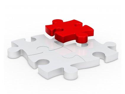 last piece puzzle