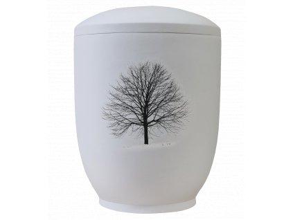 urna biskvit strom