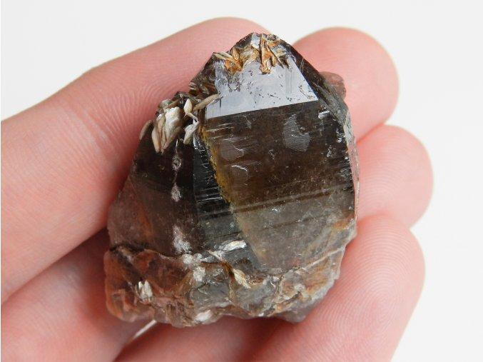 zahneda krystal temne hnedy tmavy kremeni narostla moravska obrazky 1