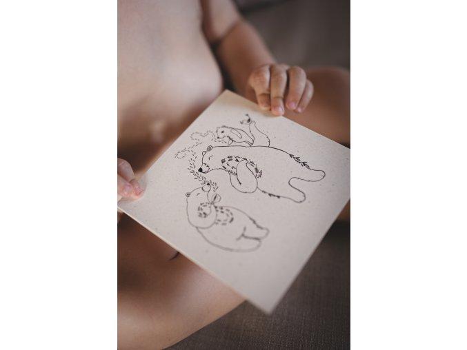 Rozkvetlá přání medvídci