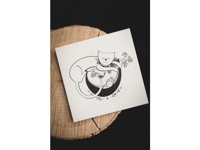 Rozkvetlá přání kočička a miminko