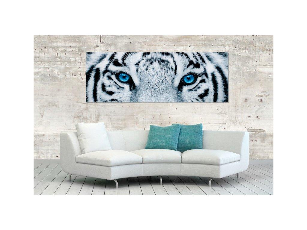 Moderní obraz na zeď - Tiger, 140 x 50 cm