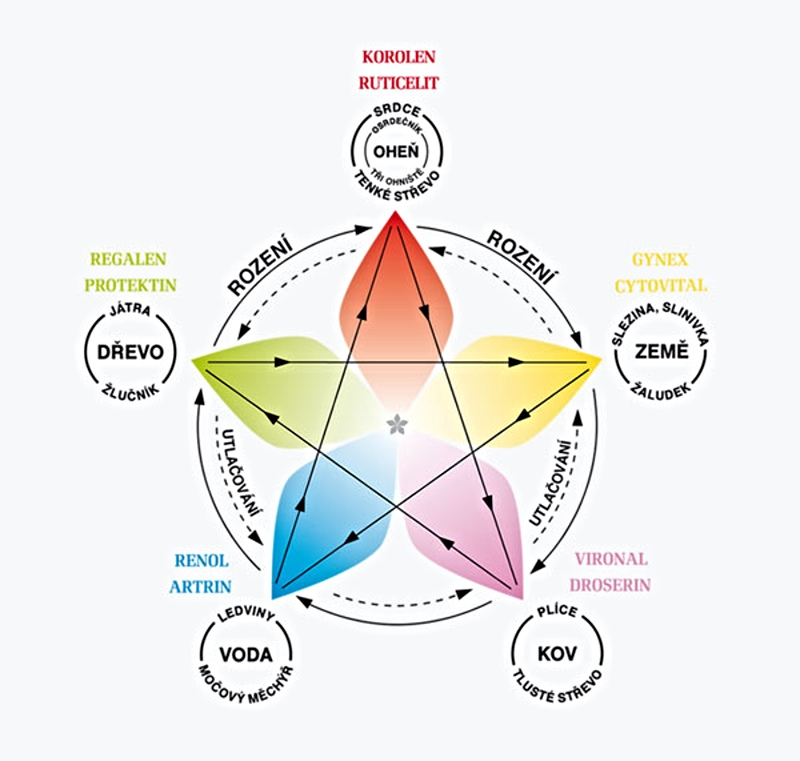 Princip pentagramu